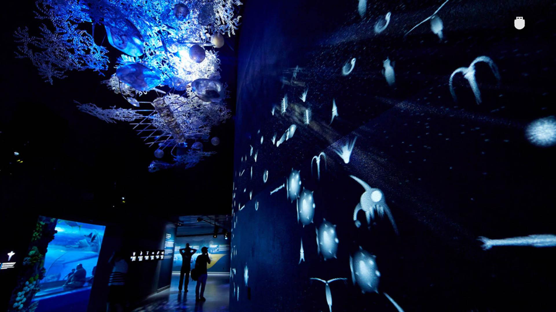 海瑞海洋科技科学馆